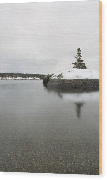 Winter In Blue Hill Wood Print