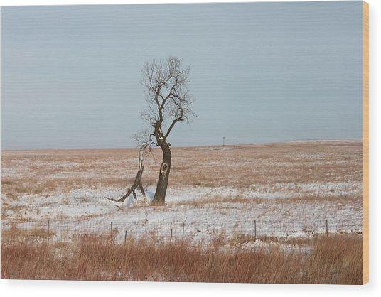 Winter In Kansas Wood Print