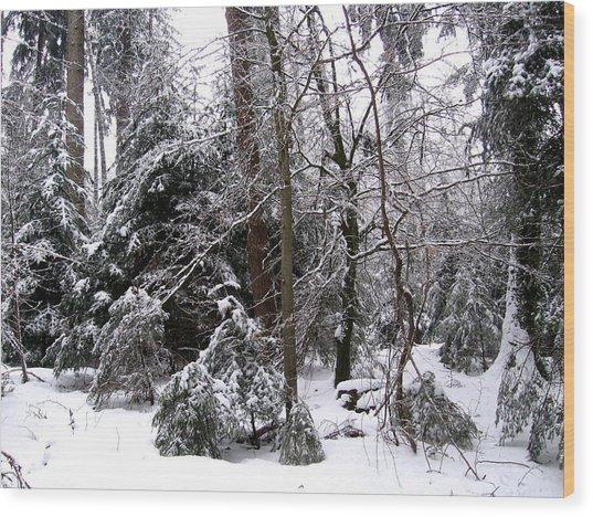 Winter In Krauchthal IIi Wood Print by David Ritsema
