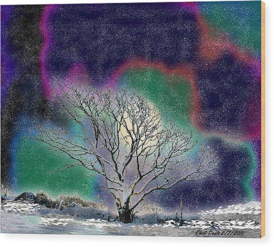 Winter In Oklahoma 2011 Wood Print