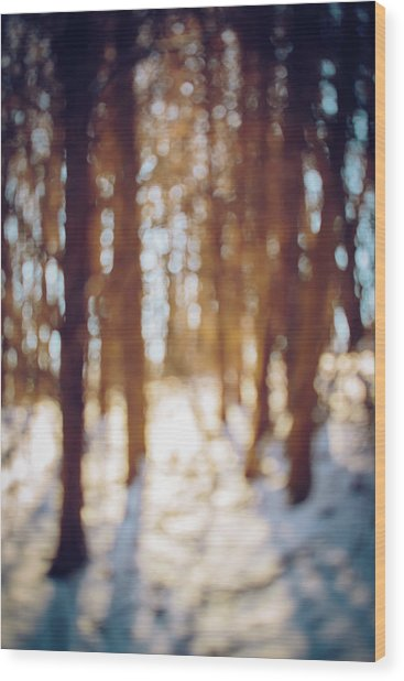 Winter In Snow Wood Print