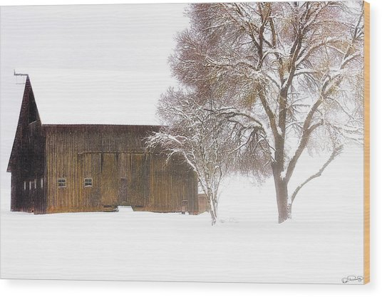 Winter In The Country Wood Print