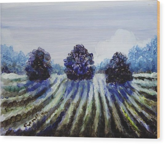 Winter In The Vineyard Wood Print by Shelley Capovilla