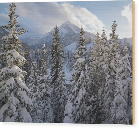 Winter In The Wasatch Wood Print
