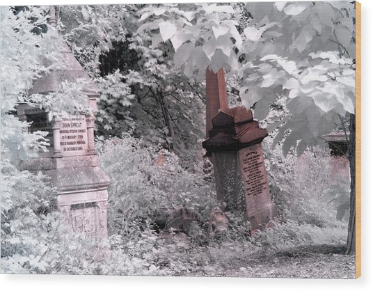 Winter Infrared Cemetery Wood Print