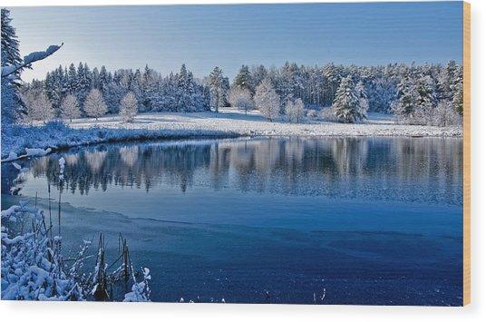 Winter Lake Scene 2 Wood Print by Edward Myers