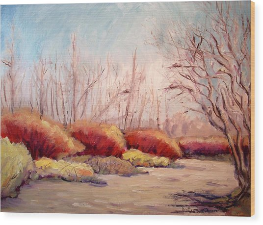 Winter Landscape Dry Creek Bed Wood Print