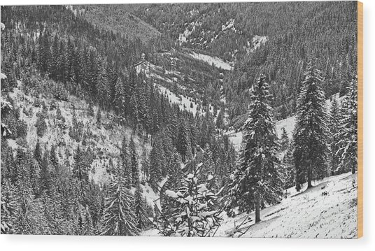 Winter Landscape In Giurgeu Mountains Wood Print by Gabriela Insuratelu