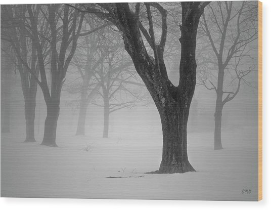 Winter Landscape V Wood Print