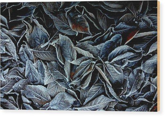 Winter Leaves Wood Print