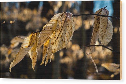 Winter Leaves Left Wood Print