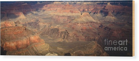 Winter Light In Grand Canyon Wood Print