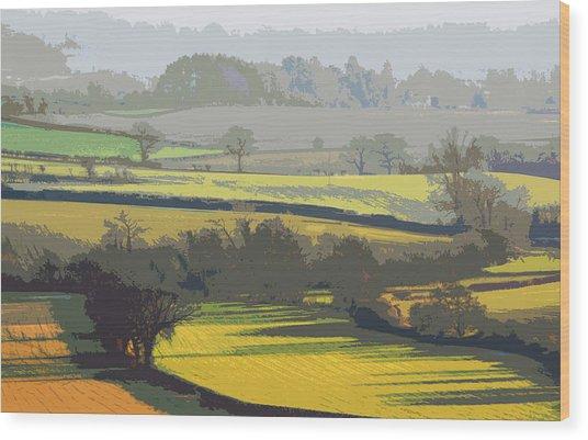 Lyth Hill 2 - Winter Light Wood Print
