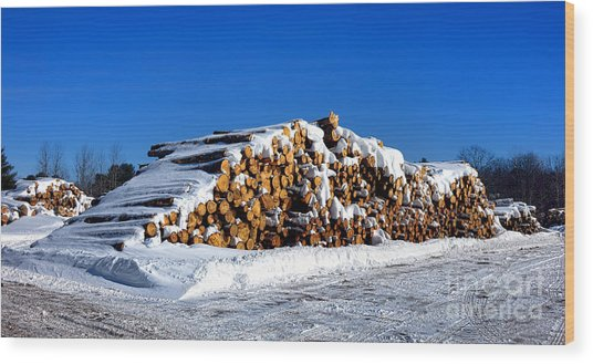Winter Logs Wood Print