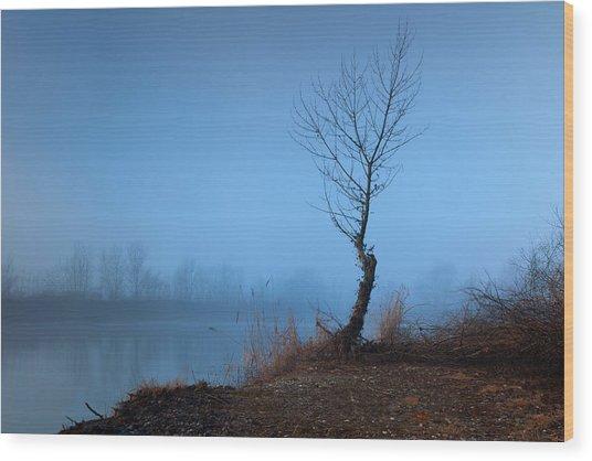 Winter Loner Wood Print