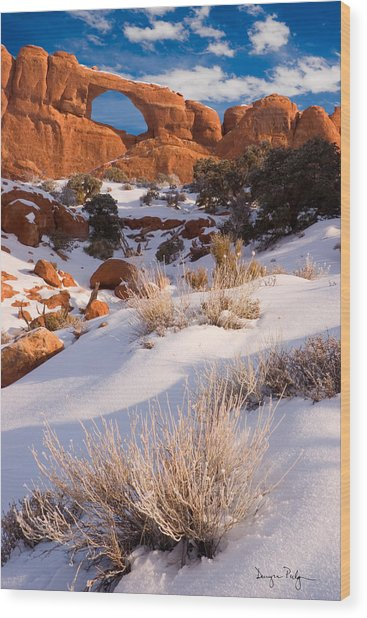 Winter Morning At Arches National Park Wood Print by Douglas Pulsipher