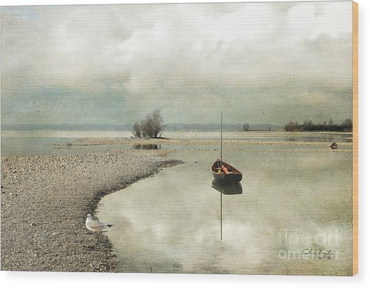Winter Morning By The Lake Wood Print