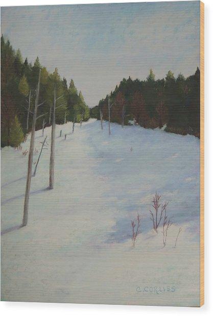 Winter On Moose Pond Wood Print