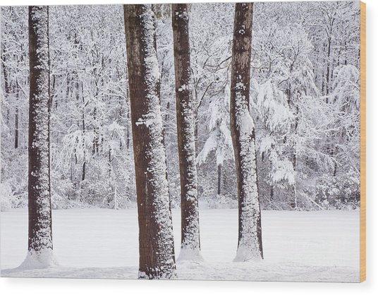Winter On Paradise Pond Wood Print
