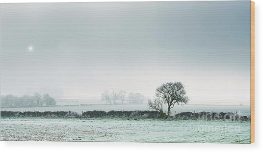 Winter On The Mendips Wood Print