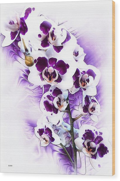 Winter Orchid Wood Print