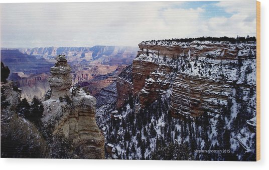 Winter Panorama Wood Print