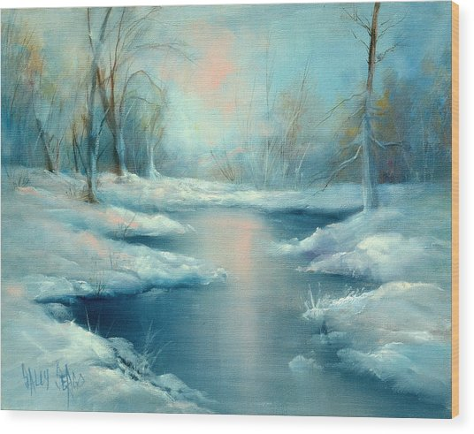 Winter Pond Wood Print by Sally Seago