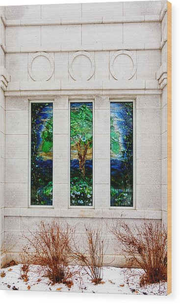 Winter Quarters Temple Tree Of Life Stained Glass Window Details Wood Print