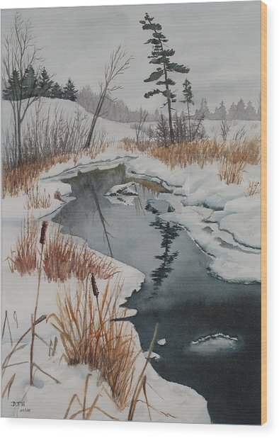 Winter Reflection Wood Print by Debbie Homewood