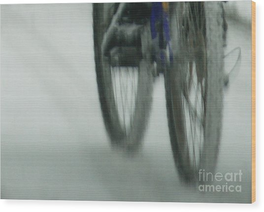 Winter Ride Wood Print