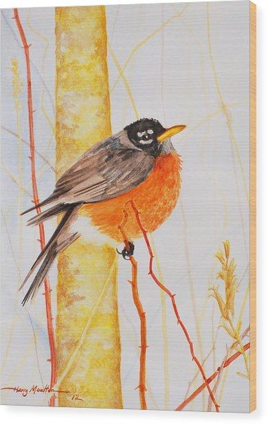 Winter Robin Wood Print