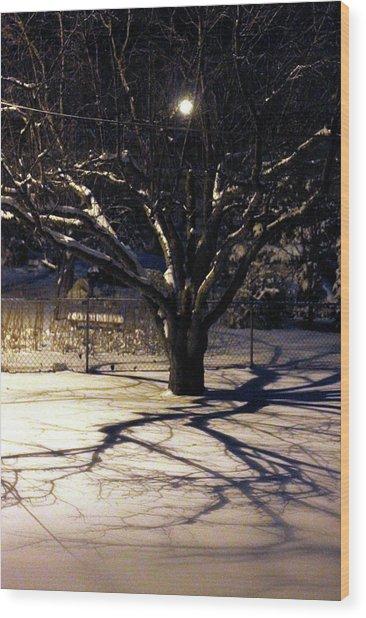 Winter Romace Wood Print