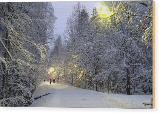 Winter Scene 5 Wood Print by Sami Tiainen