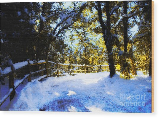 Winter Scene Wood Print by Terry Runion