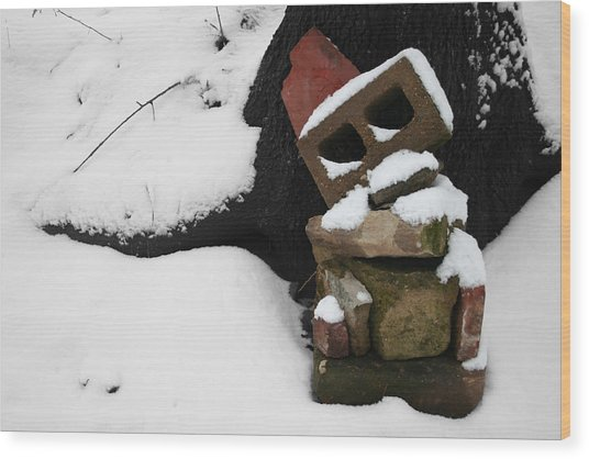 Wood Print featuring the photograph Winter Sculpture by Dylan Punke