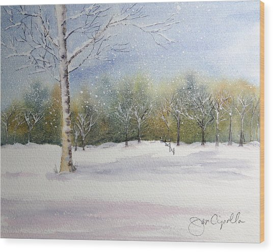 Winter Silence Wood Print by Jan Cipolla