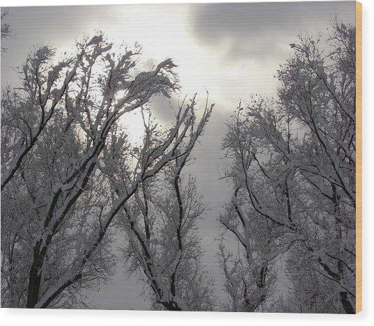 Winter Solstice Utah Wood Print