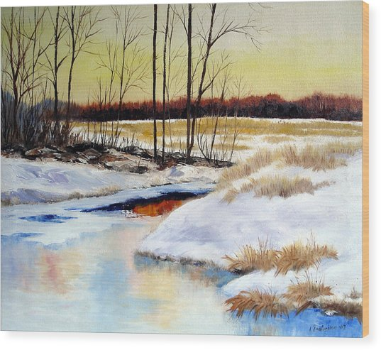 Winter Stream 1107 Wood Print by Laura Tasheiko