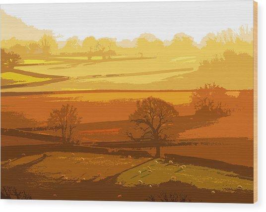 Lyth Hill 1 - Winter Sun  Wood Print