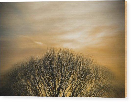 Winter Sunset Wood Print