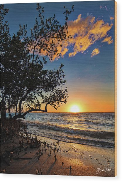 Wood Print featuring the photograph Winter Sunset by David A Lane