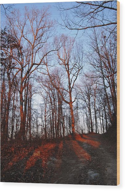 Winter Sunset In Georgia Mountains Wood Print