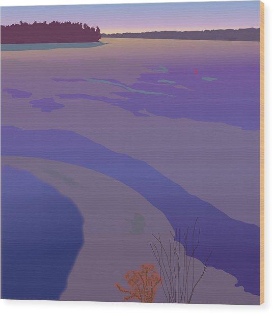 Winter Sunset Wood Print by Marian Federspiel