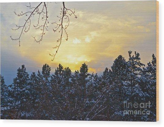 Winter Sunset On The Tree Farm #1 Wood Print
