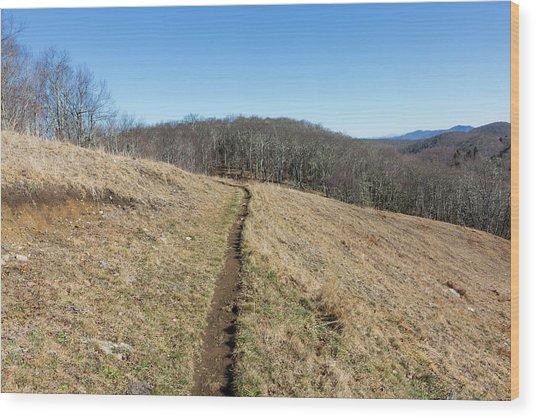 Winter Trail - December 7, 2016 Wood Print