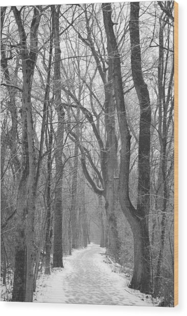 Winter Trail Wood Print by Peter  McIntosh