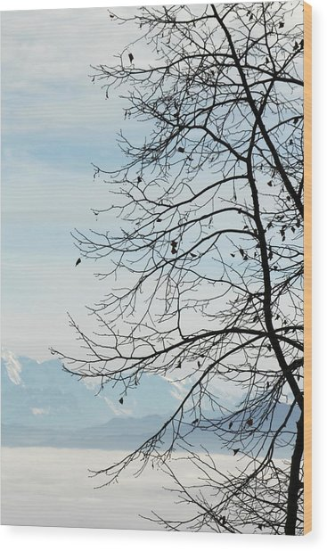 Winter Tree And Alps Mountains Upon The Fog Wood Print