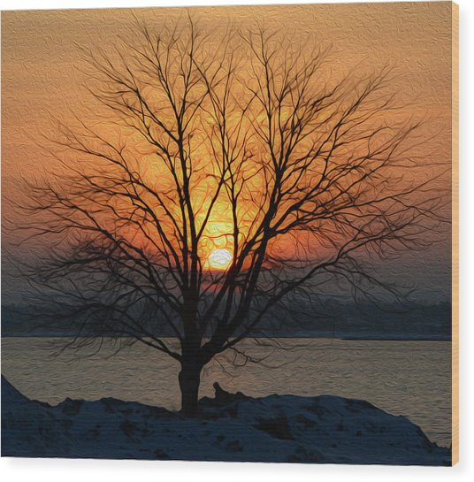 Winter Tree Sunrise Wood Print