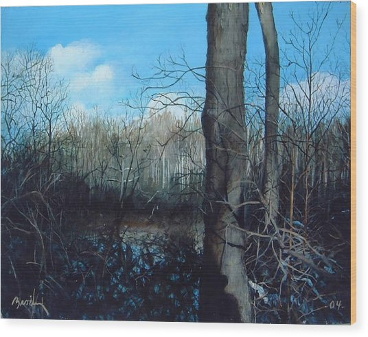 Winter Trees Wood Print by William  Brody