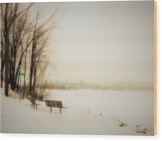 Winter View Over Montreal Wood Print